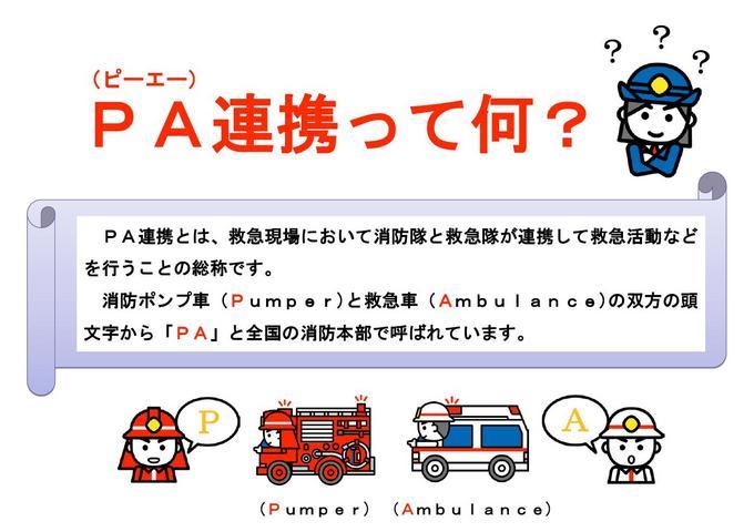 pa2.JPGのサムネイル画像